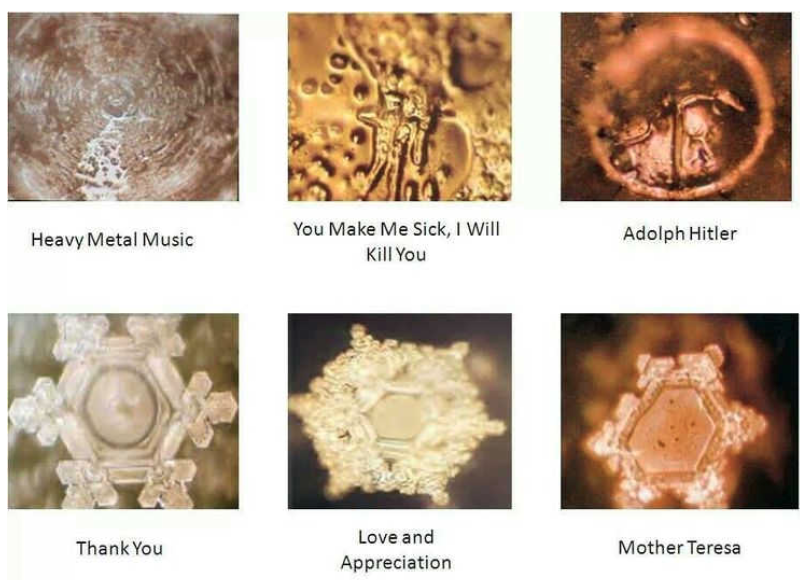 Masuro Emoto - The Hidden Messages in Water – MoovSwim